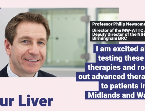 Patients with inflammatory liver disease have new hope